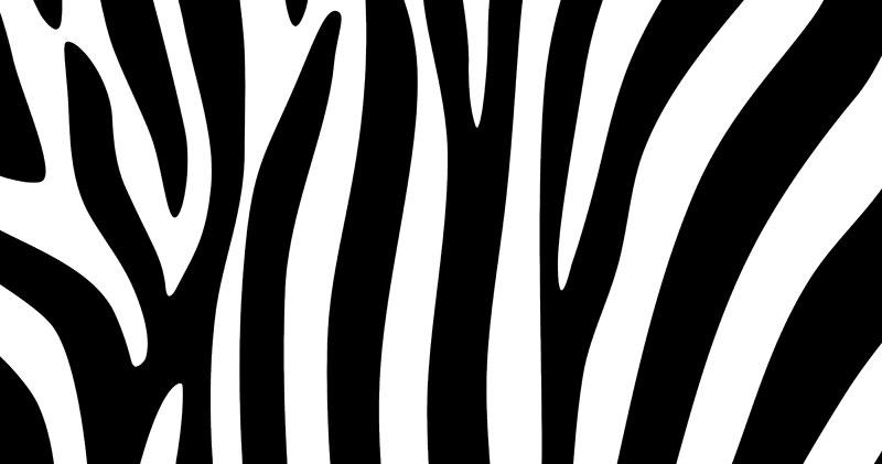 سیاه یا سفید، مساله این است!